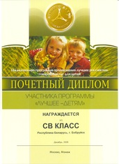 Honorary diploma of the participant of the program